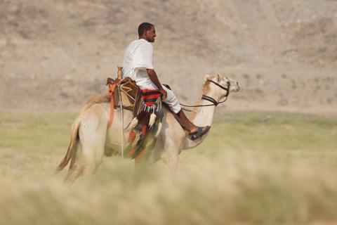 saudita-desierto.jpg