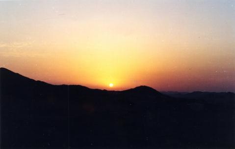 arabia-rey.jpg